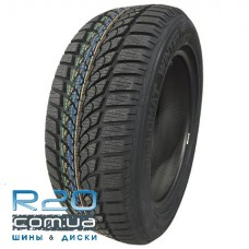 Diplomat Winter HP 205/55 R16 91T